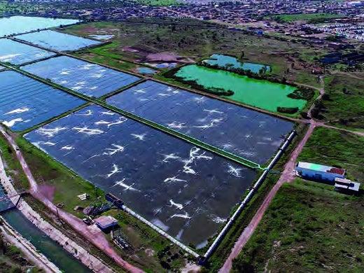 Page 30 of CASO DE ÉXITO: Aguas del Municipio de Durango (AMD) Eficiencia financiera con compromiso social
