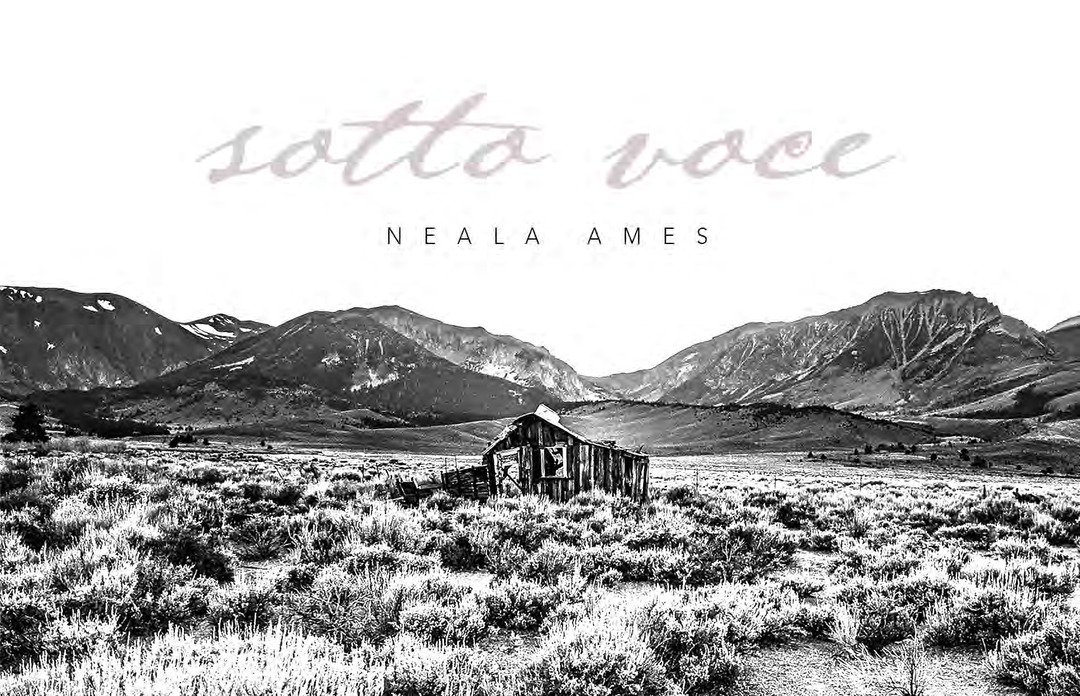 Page 128 of Sotto Voce by Neala Ames