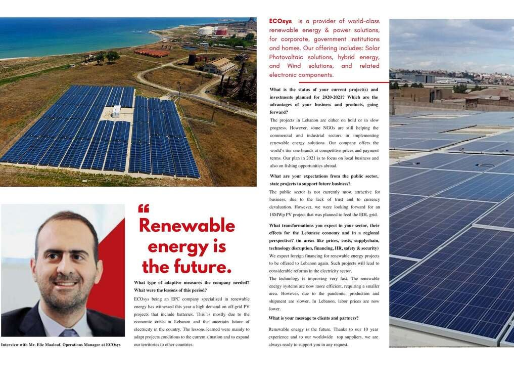 """Page 36 of """"Renewable energy is the future"""""""