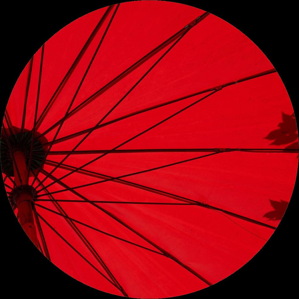 story from: Ed4All • BLEAP® | NIOS PEDAGOGY LEARNING | NIOS CURIICULUM