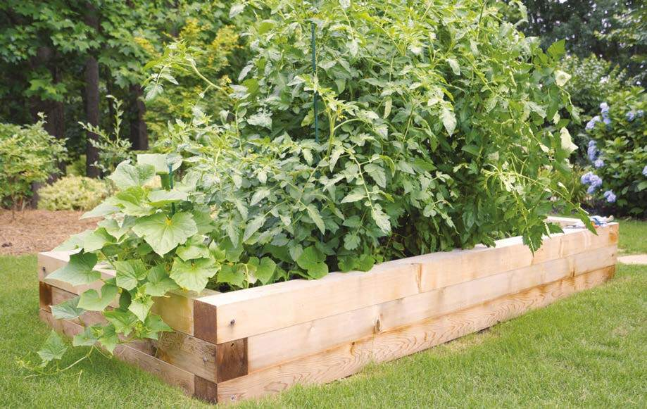 Page 27 of Raised beds