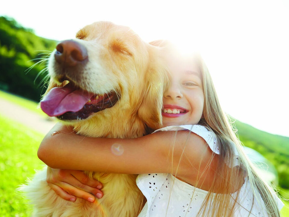 Page 12 of The Emotional Benefits of Pet Dogs