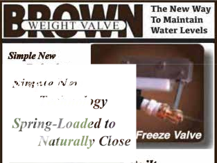 Page 20 of Brown Weight Valve – A Valve You Can Love