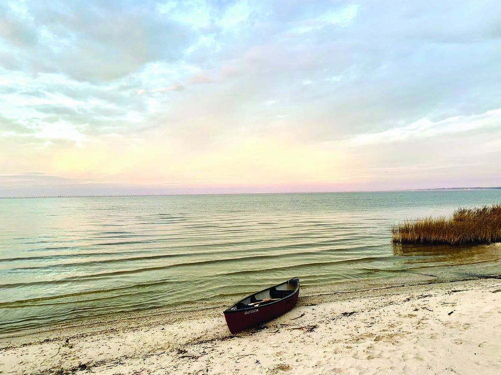 Page 8 of Louisiana State Parks on the Rise