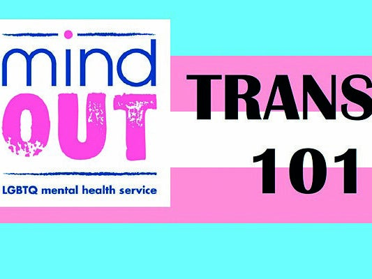 Page 6 of MindOut Trans 101 training