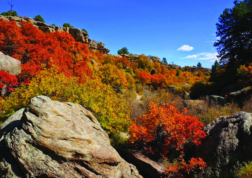Page 8 of Castlewood Canyon State Park